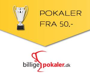 pokaler-300x250.jpg